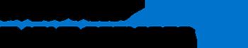 Brazos Valley Flight Services Logo